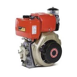 Motore di ricambio Diesel 9 CV